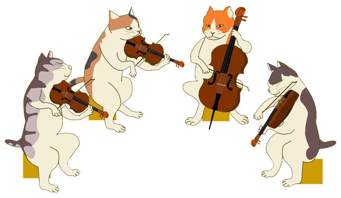 弦乐四重奏